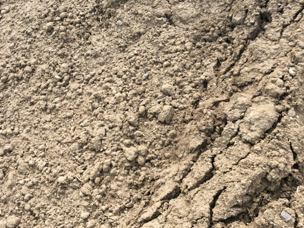 Rough Fill Dirt (when available)